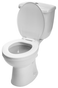 toilet repair in Austin
